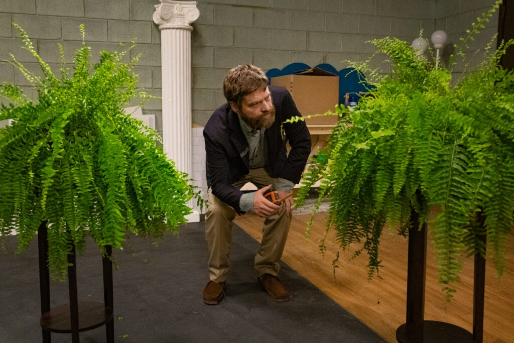 Zach Galifianakis squats between his two Boston ferns