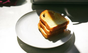 Top toasters for your daily bread