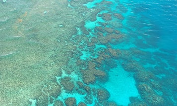 The longest Great Barrier Reef study chronicles a century of devastation