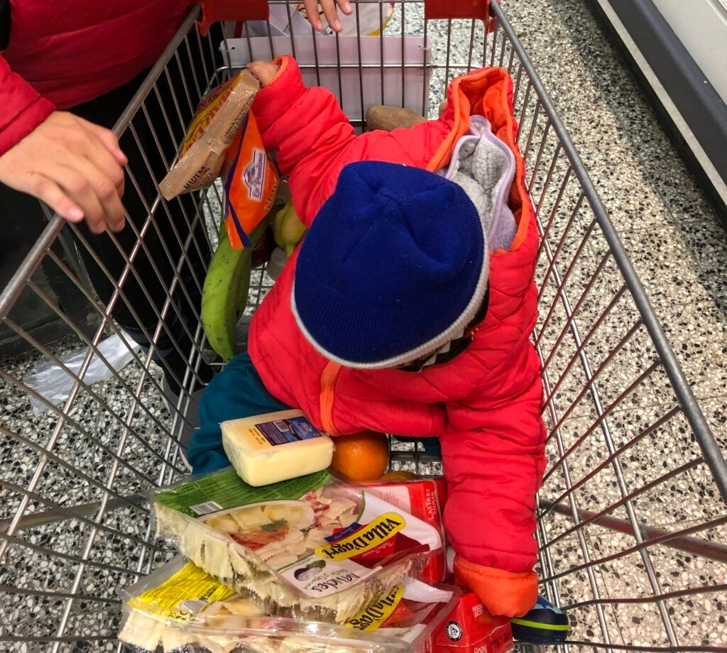 child in a shopping cart among groceries