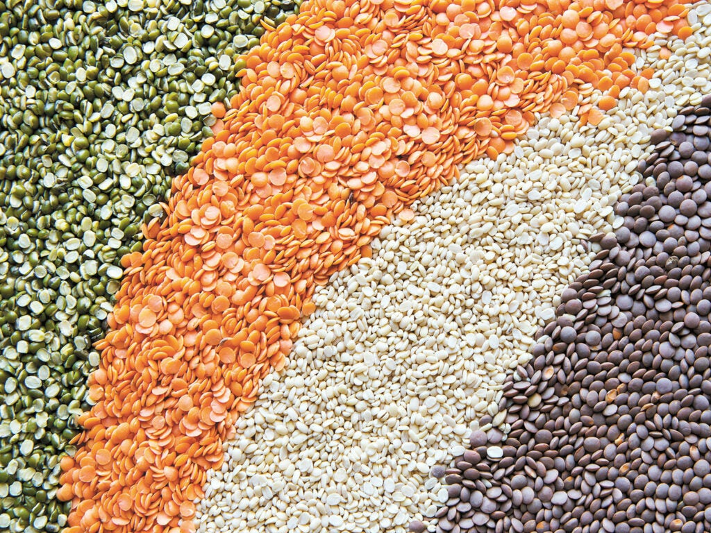 assortment of lentils separated by color
