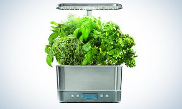 Smart gardens for people who can't keep plants alive