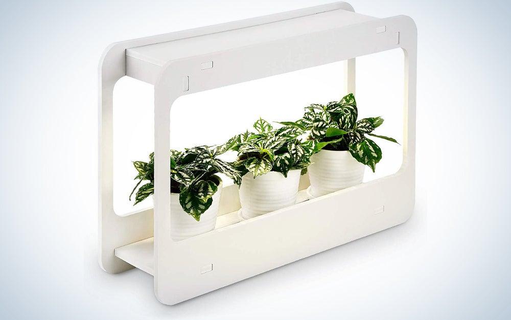 Torchstar Plant Grow LED Indoor Herb Garden