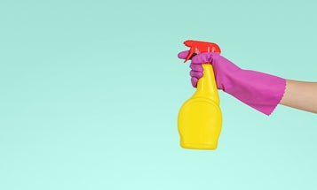 The only all-purpose cleaners you'll need