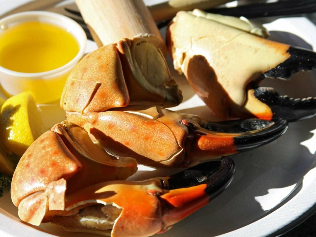 Cooked and cracked stone crab claws