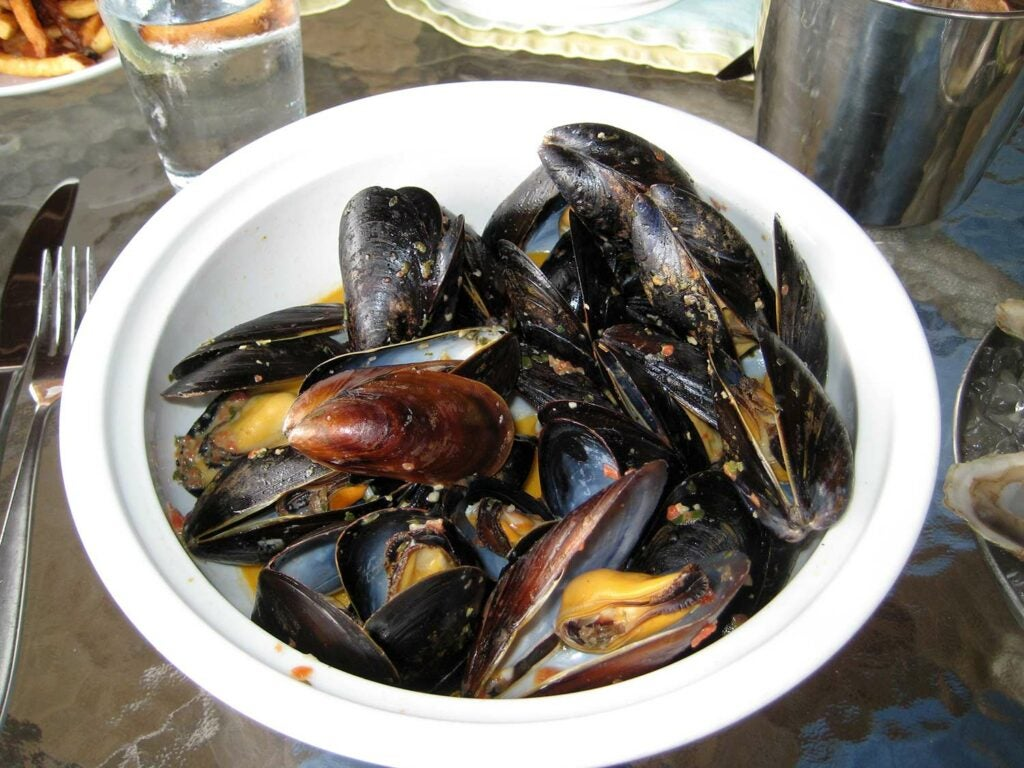 cooked Mussels.