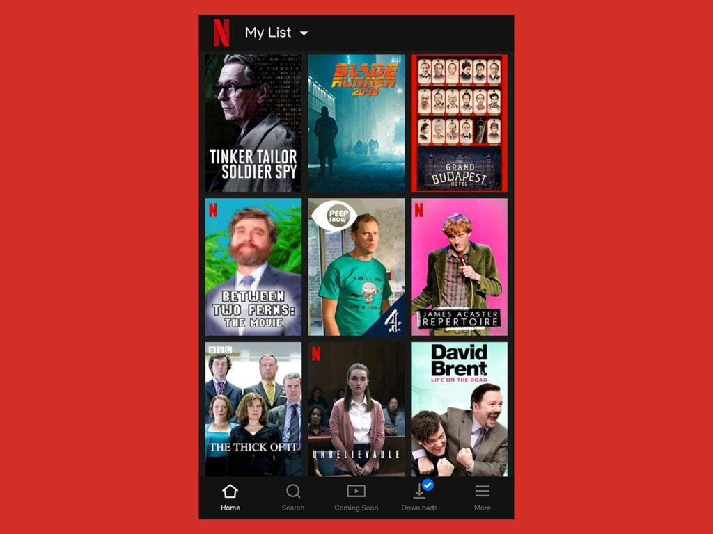 a screenshot of the Netflix app showing its My List feature