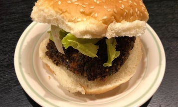 How to make your own veggie burgers