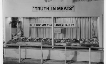 America's obsession with meat, explained