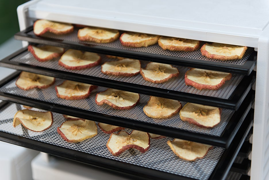 The best dehydrators to make your own dried fruit and jerky