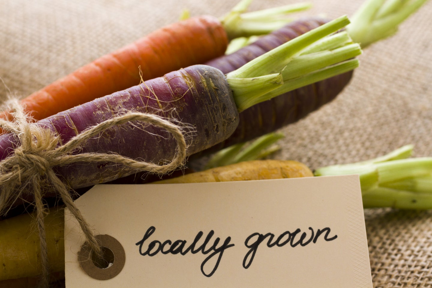 colorful carrots with locally grown tag attached