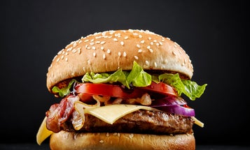From mutton to masterpiece: The juicy history of the hamburger