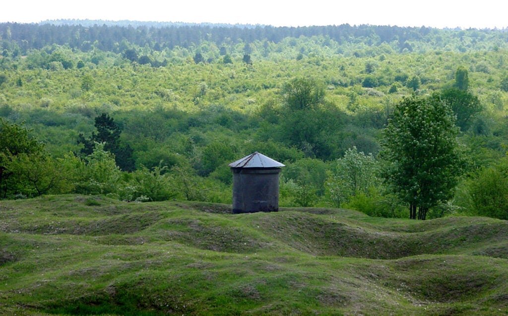 Verdun Forest