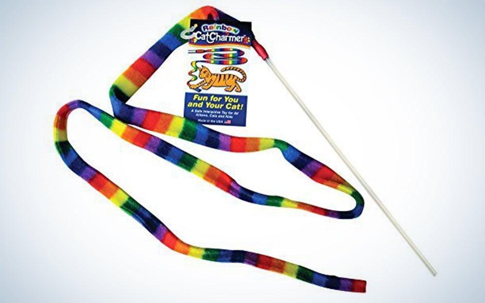 Rainbow cat dancer