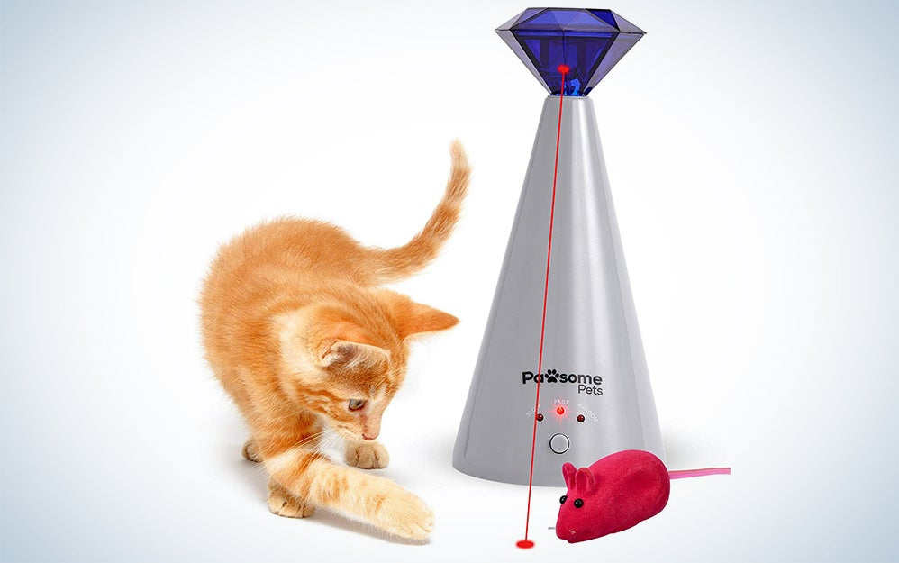 Pawsome Pets Cat Laser Toy