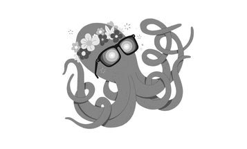 When you give octopus MDMA they hug it out