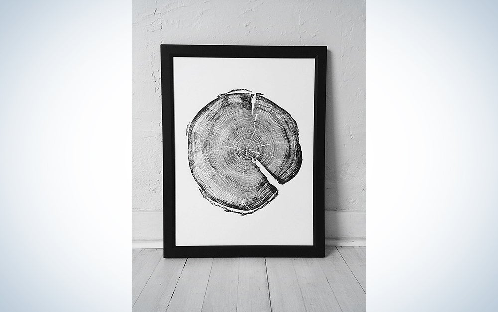 Uinta National Forest Tree Ring Print