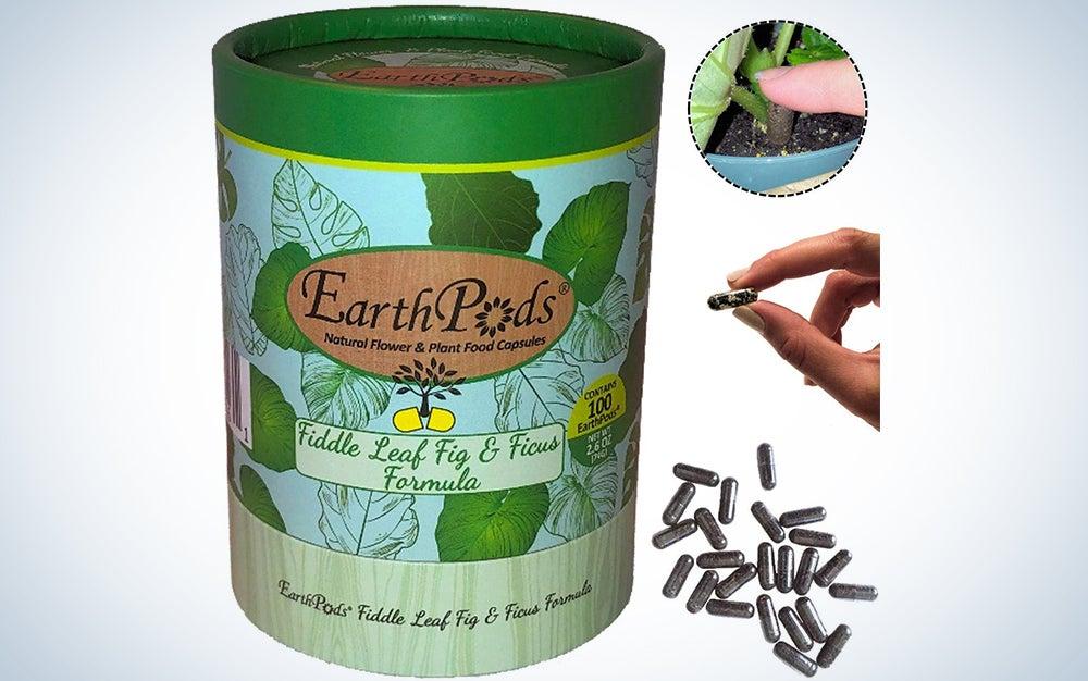 EarthPods Premium Fiddle Leaf Fig & Ficus Plant Food