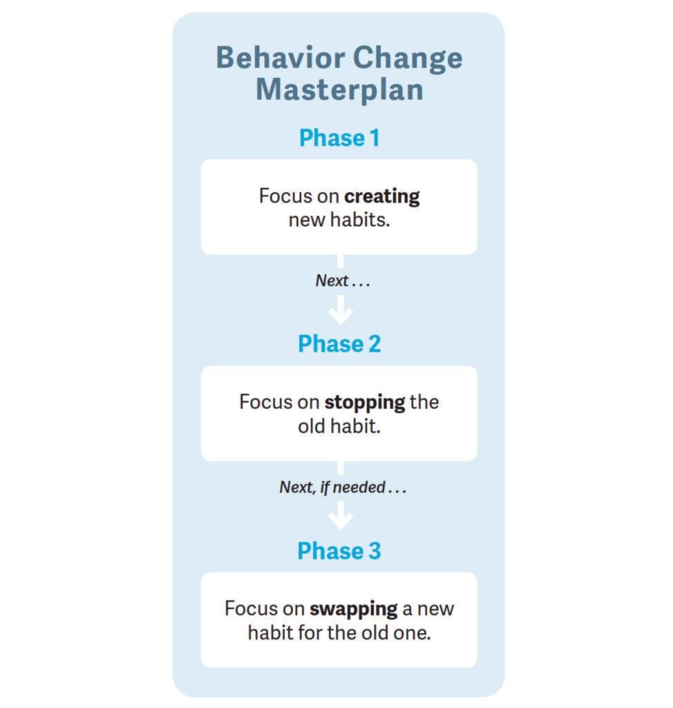behavior change masterplan flow chart