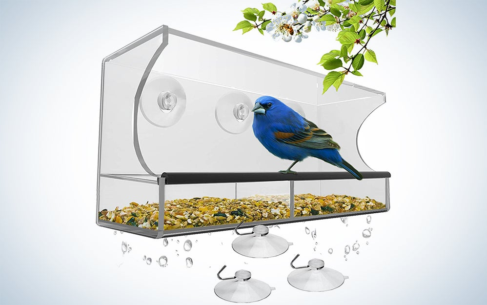 Nature's Hangout Window Bird Feeder with Strong Suction Cups