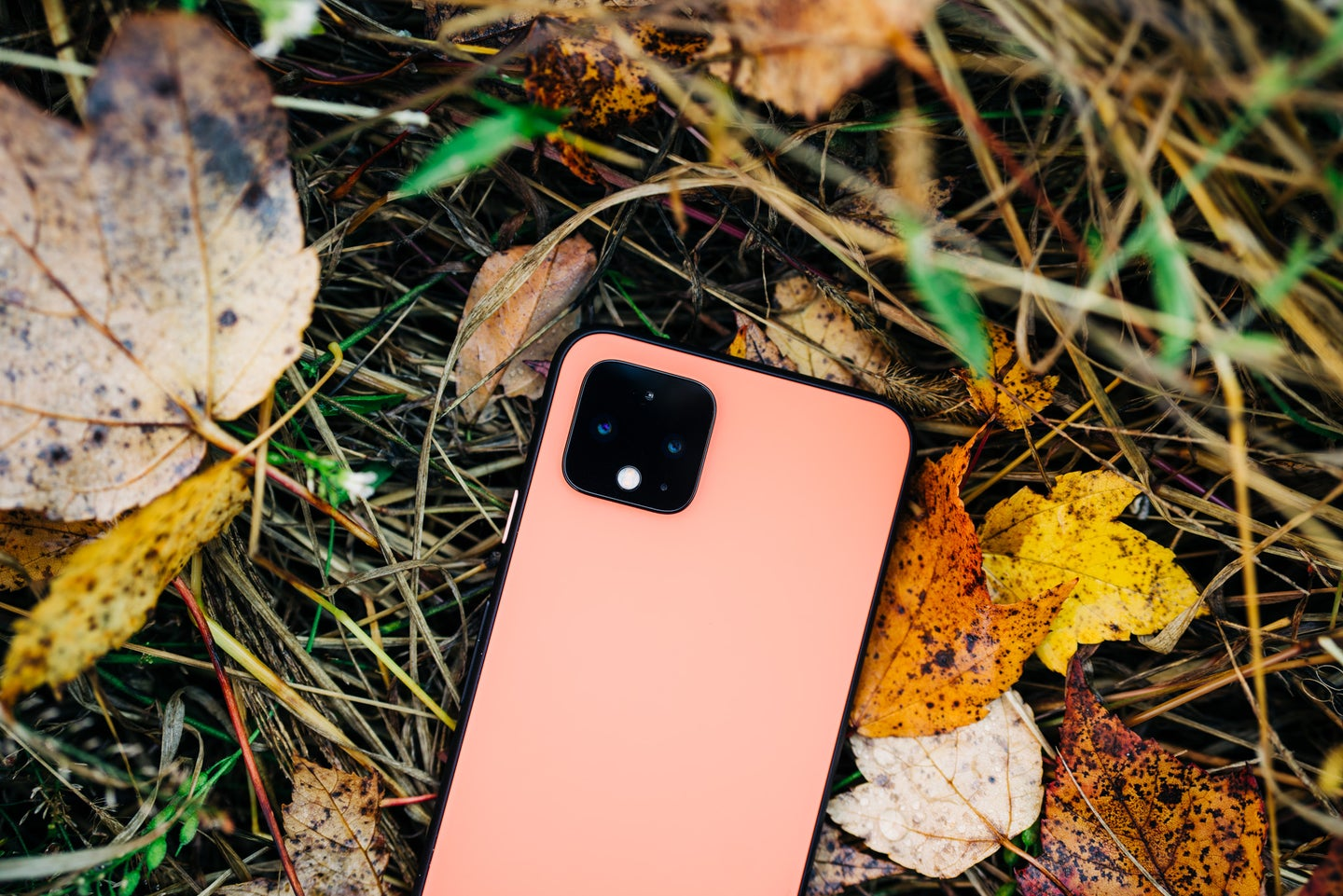 Google's Pixel 4 has a square camera array like the iPhone 11 Pro.