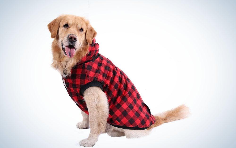Pawz Road Dog Plaid Shirt Coat Hoodie