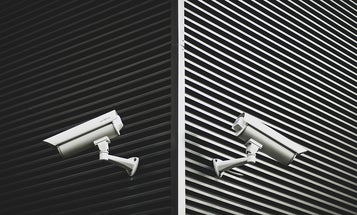 Home security cameras that offer peace of mind (and perhaps the occasional raccoon footage)