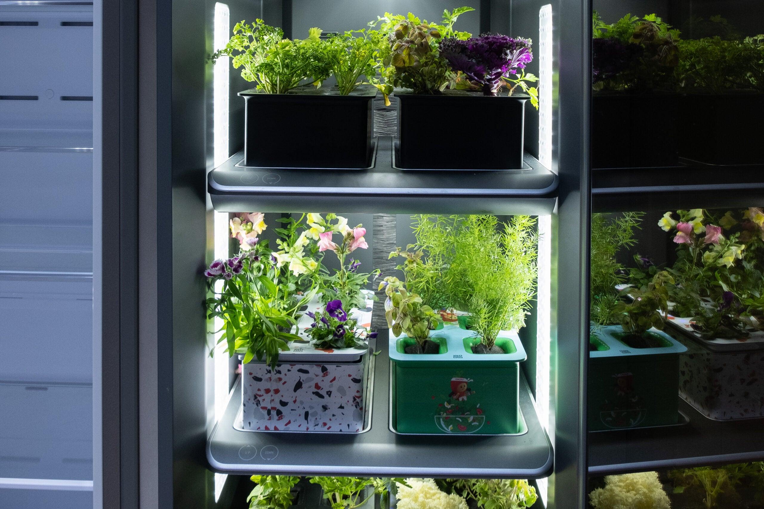 Samsung Bespoke Plant fridge.