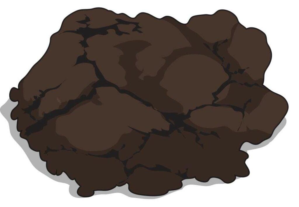 Bear poop illustration.