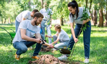 Show your local park some love by planning a volunteer day