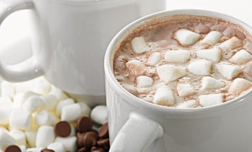 A food scientist breaks down the thermodynamics between marshmallows and hot chocolate
