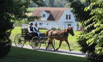 A mysterious cluster of deaths amongst Amish children has finally been solved