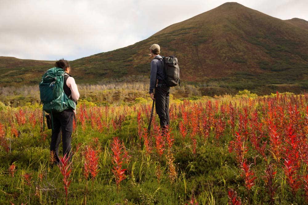 Hunters hiking in the Kodiak