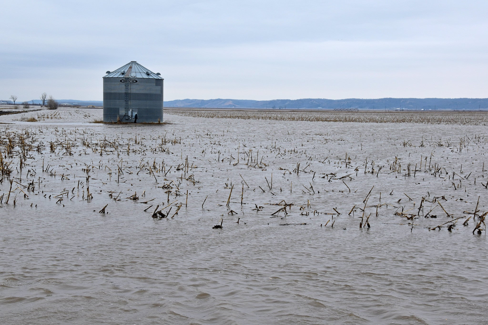 flooded field with silo in background