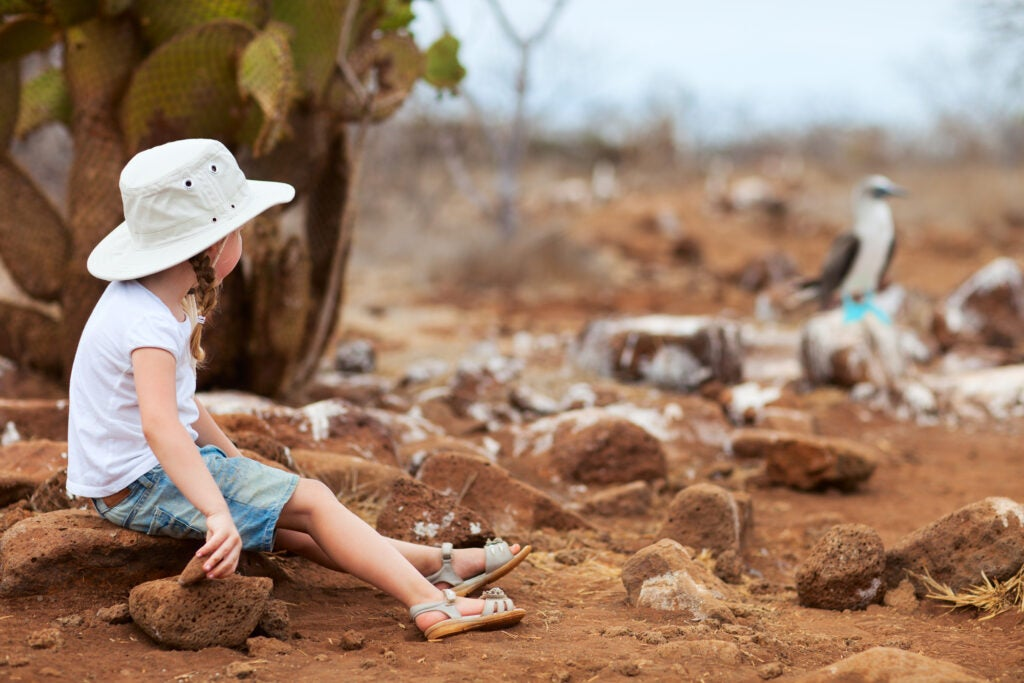 A little girl looks at a blue-footed booby in the Galápagos.
