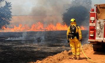 California needs to set more fires