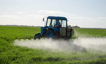 Pesticide testing is flawed—and it's harming our birds and bees