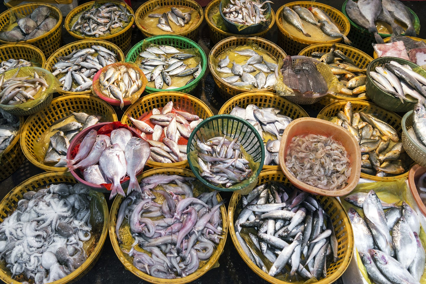 baskets of fish at an outdoor market