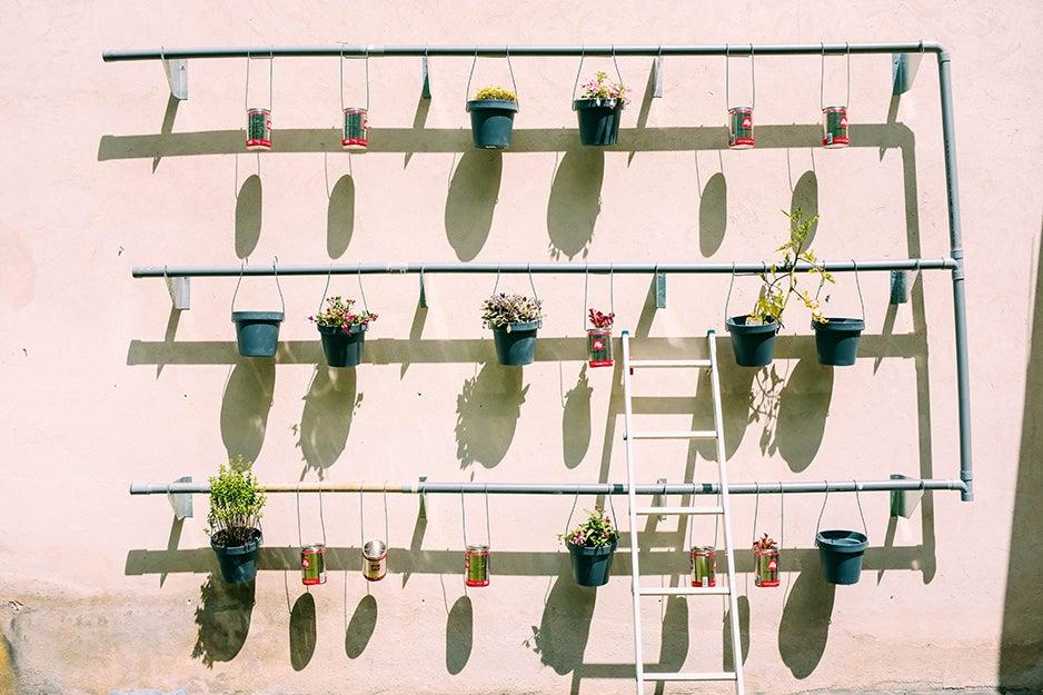 innovative planters