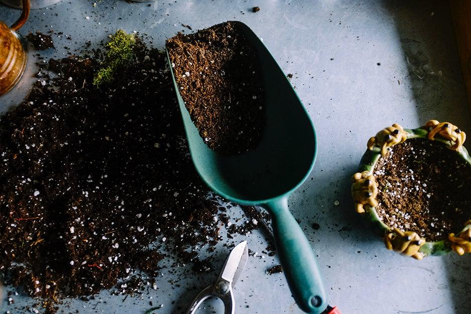 gardening tool and soil