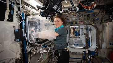 astronaut in space doing experiments with growing human organs.