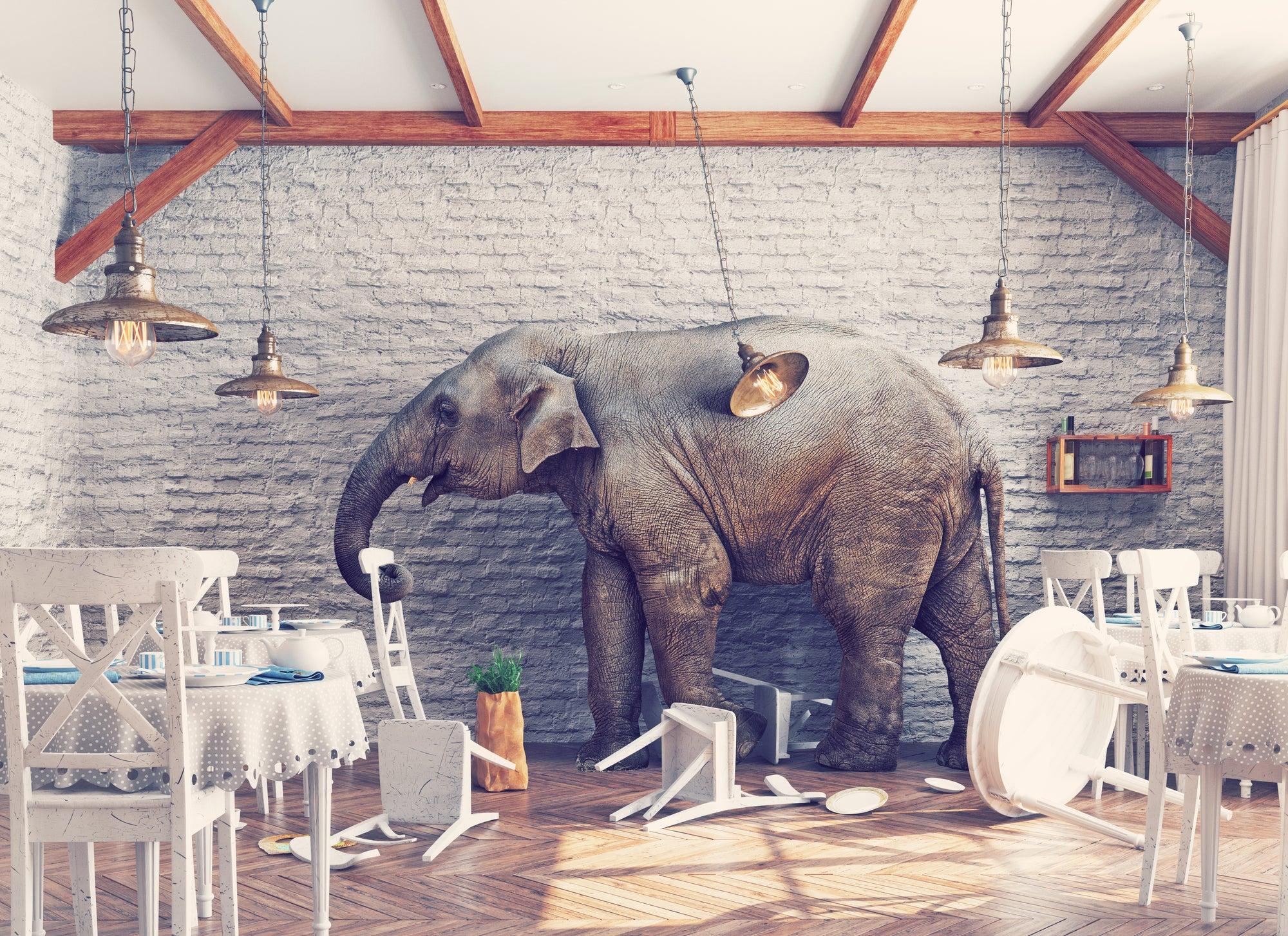 An elephant causing chaos inside a restaurant