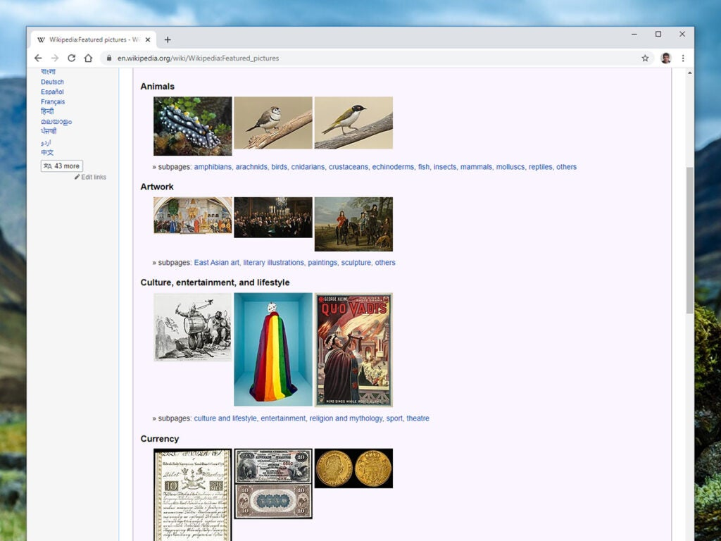 a screenshot of a bunch of images on Wikipedia.