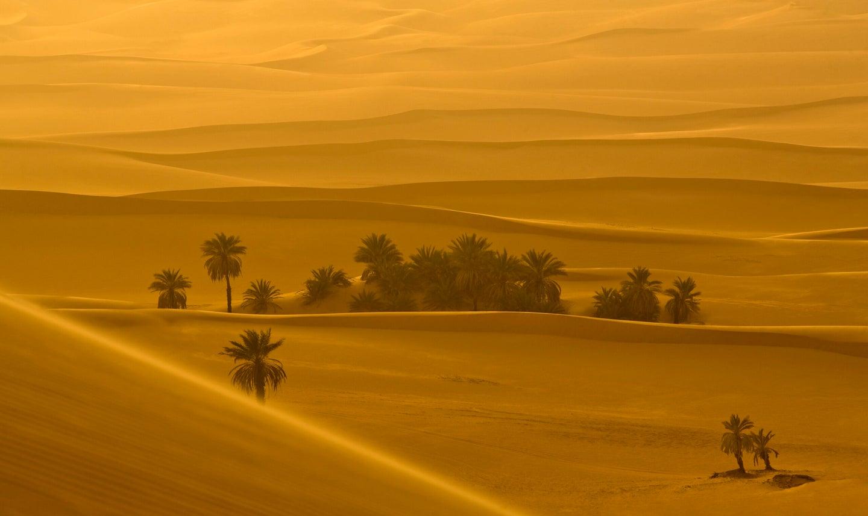 Sahara desert at sunset.
