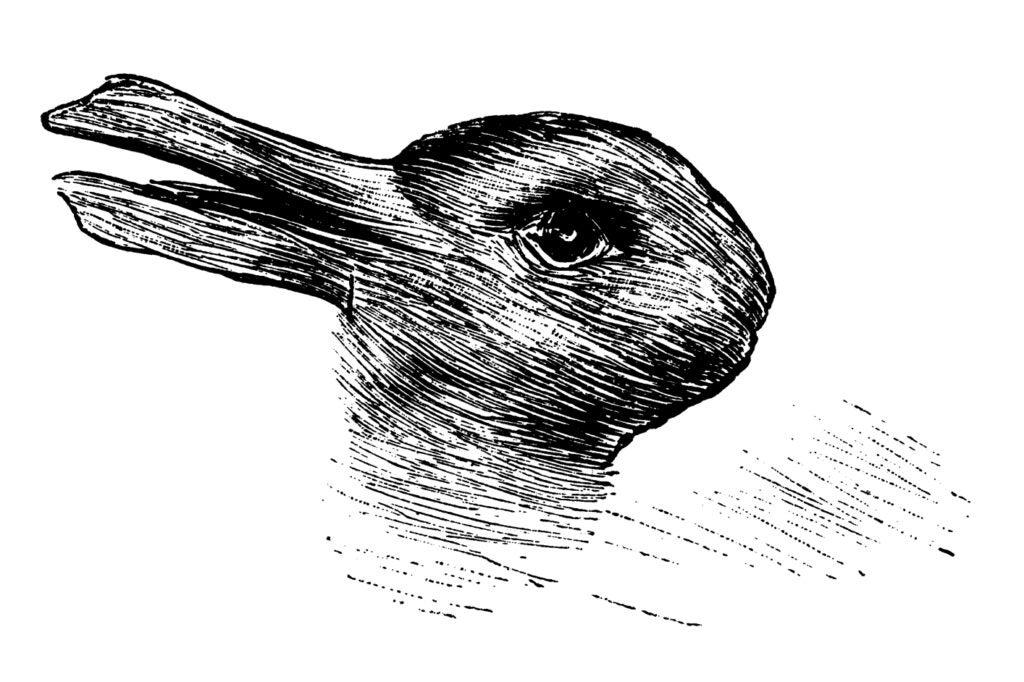 rabbit-duck illusion