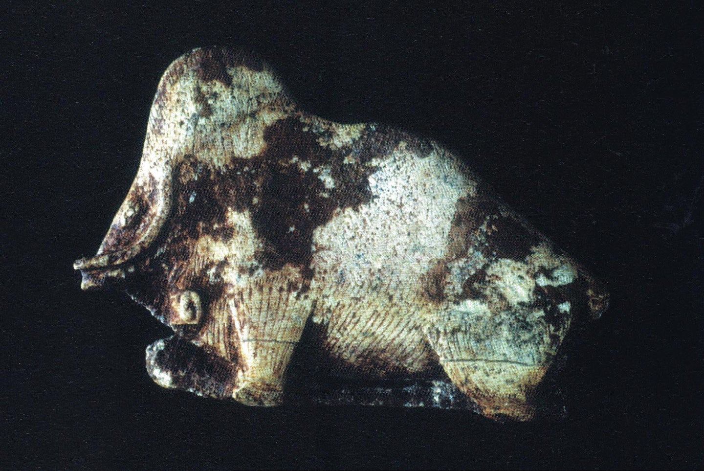 Mammoth Bison carved illusion