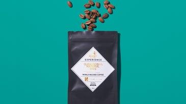 Klatch Coffee Elida Geisha Natural 1029