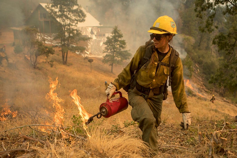 A member of the Tahoe Hotshot crew uses a drip torch for a controlled burn at Sierra National Forest in California.