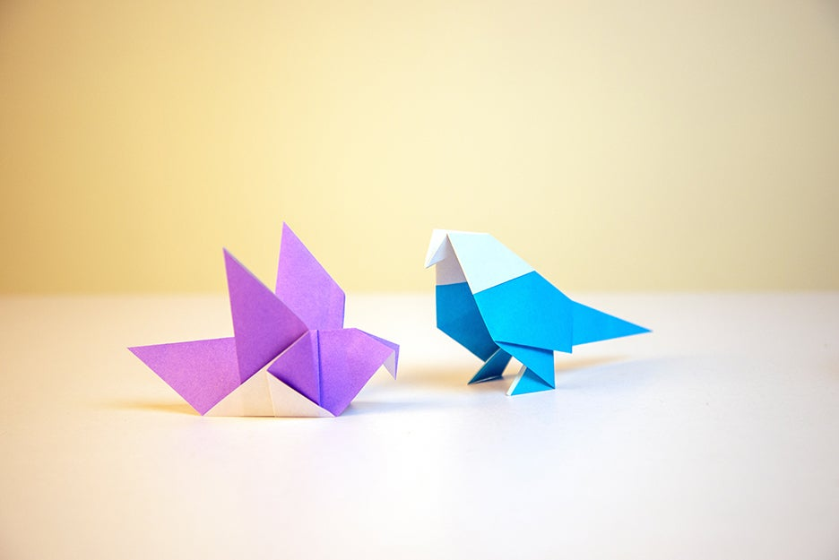 origami on a surface