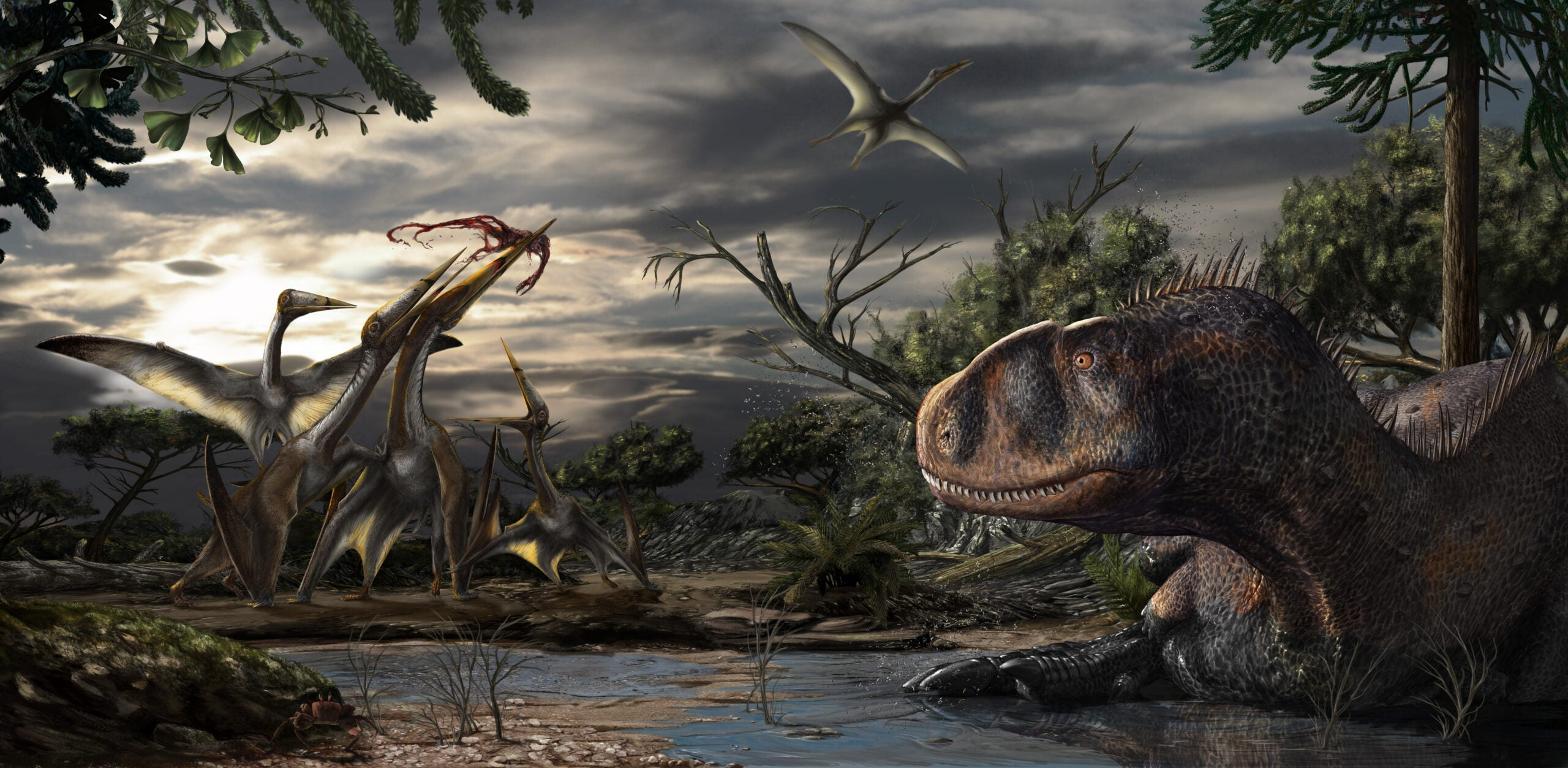 An abelisaur, a short-snouted predatory dinosaur, rests while several pterosaurs fight over leftovers from a carcass.